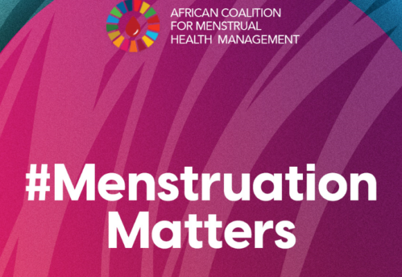 Menstrual Health in Africa: Update of the 2018 Rapid Review and Stocktaking Abstract